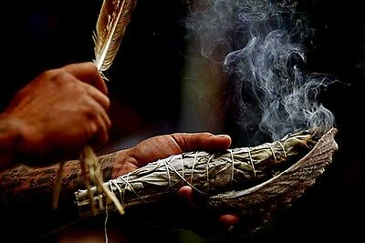 Smudging Sage with Smudging Feather