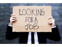 Looking for a temporary summer job