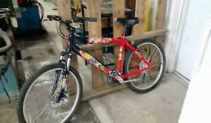 ATENTION BIKE FOR SELL-29 SPEED GOOD CONDITION.200$