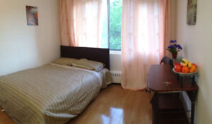 Near McGill Everything include 1 1/2 Apartment from September !!