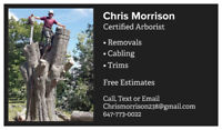 Arborist with 10+ years experience. Fair and free quotes.