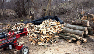 Looking to trade firewood