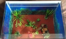 """Ex-display fish tank 18"""" X 12"""" X 12"""" (ideal for FRY)"""