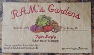 Pre order your pepper plants , tomatoes , squash and many more Cambridge Kitchener Area image 1