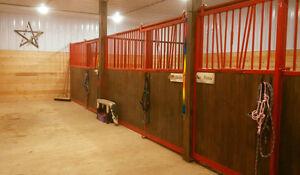 Horse Board EARLTON