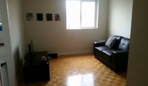 UOttawa - Sandy Hill Apartment Room for Rent Jan 2017