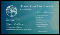 Tree Services in Northumberland and Durham