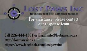 Missing a pet? Found a pet? We can help!