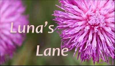 Luna's Lane