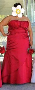 Gorgeous Plus Size Strapless Dress (for Prom/Grad or Bridesmaid)