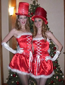 Santa Baby Satin Corset and Skirt