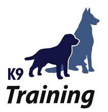 Dog Training One 2 One lessons Mandurama Blayney Area Preview