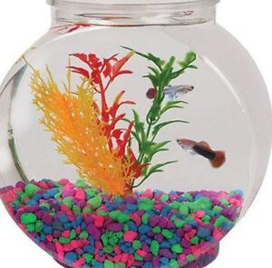 Plastic fish bowl ebay for How to clean a fish tank without killing the fish