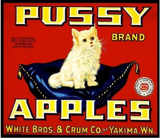 Yakima Washington State Pussy White Persian Cat Apple Fruit Crate Label Print