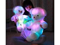 LED teddy bear 50cm £17.00 plus £4 delivery