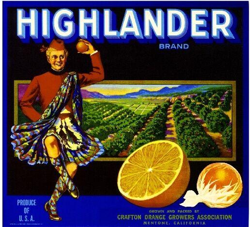 Mentone Highland Highlander Scottish Orange Citrus Fruit Crate Label Art Print
