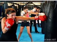Kick boxing ( Muay Thai ) lessons. First lesson free !
