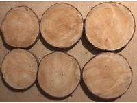 Tree slices for table centrepiece x6
