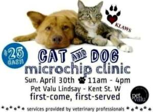 KLAWS Low Cost Microchip Clinic Sunday April 30th, Lindsay!
