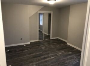 Newly renovated apartment for rent near Center mall