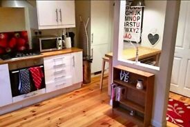 Modern, clean and cosy apartment near city centre - long and short let available