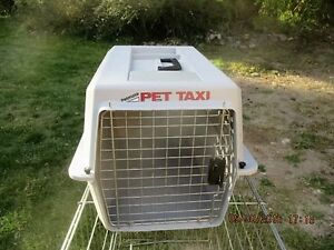 pet taxi  dog carry case