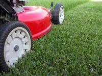 Lawn care and more!