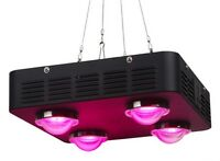 Spider 4 LED Grow Light MCOB (Multi Chip On Board)