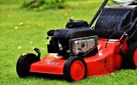 GRASS CUTTING AND WEED REMOVAL, PREPARE YOUR LAWN FOR WINTER