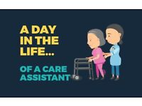 Personal Assistant (Carer) Needed