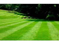 Cardiff and the Vale gardens - garden maintenance - free quotations