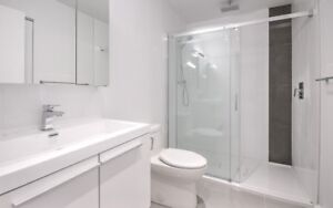 41/2 Montreal downtown (Square-Victoria)Lease transfer 1 year.