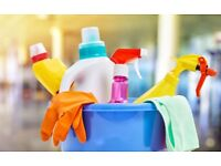 CLEANING SERVICES AMAZING PROFESSIONAL CLEANER