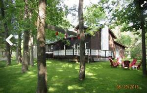 6 Bed Blue Mountain Rental - Park Like Setting