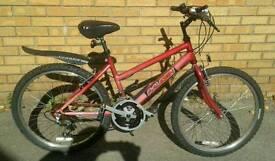Raleigh girls/childs/teenagers mountain bike, nice condition