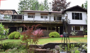Gold River BC - 3 bed  big  house for rent