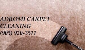EXPERT CARPET CLEANING FROM ADROMI STEAM CLEANING