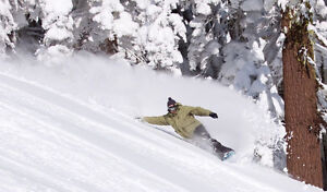 Snowboard FULL PACKAGE - NOW $20