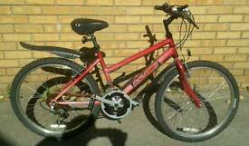 Raleigh childs/girls/teenagers mountain bike, great condition.