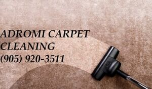 WE SPECIALIZE IN RENTAL AND COMMERCIAL SPACE CARPET CLEANING
