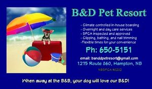 Dog Boarding & Grooming