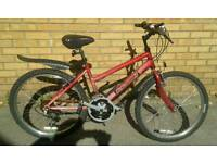 Raleigh Girls/childs/teenagers Mountain Bike in great condition.
