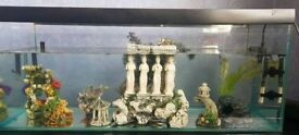 3ft fish tank includif fish and ornaments