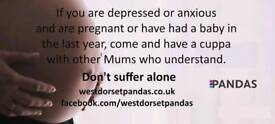 Pandas - For pregnant ladies and new mums