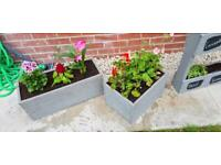 Handmade grey pallet planter boxes