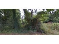 Woodland/land for sale