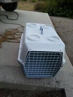mid size dog kennel