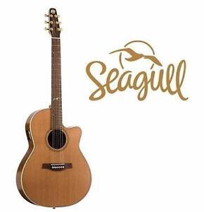 NEW SEAGULLL CW FOLK QII GUITAR   ARTIST MOSIAC ACOUSTIC ELECTRIC GUITAR - MUSIC INSTRUMENT STRINGS 97481242