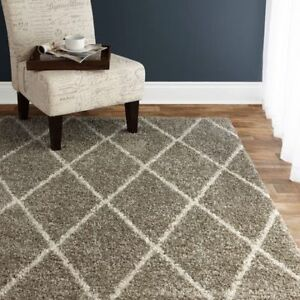 BEAUTIFUL AREA RUG