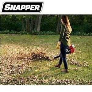 NEW SNAPPER 60V LEAF BLOWER SB60V 219959191 CORDLESS BATTERY AND CHARGER INCLUDED